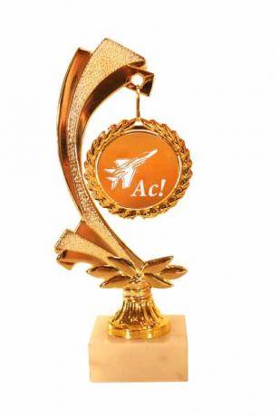 Медаль на цепи