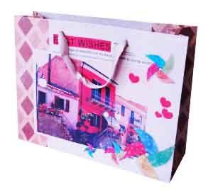 Пакет бумажный Оранжевый дом
